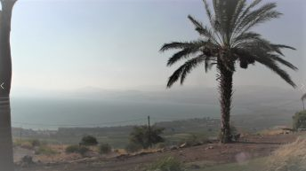 Galilee of the Holy Land