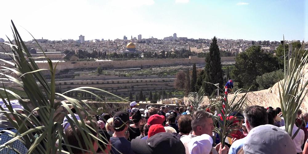 Palm Sunday In Jerusalem Video