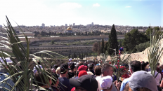 Palm Sunday In Jerusalem Video